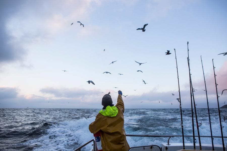 Shetland.low-501